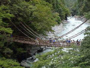 かずら橋 2